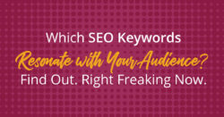 Which SEO keywords resonate with your audience? Check your Search Analytics.