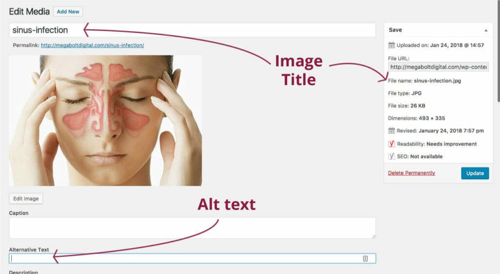 this is alt text about alt text. ALT TEXT INCEPTION.