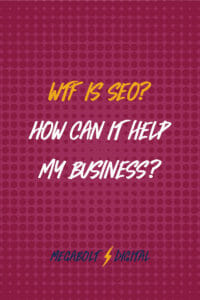"""WTF is SEO? And how can it help my business?"" I'll break it down for you in normal language, using GIFs instead of jargon."