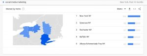 Unsurprisingly, New York City is the top metro area where people are searching for this term, but you can see Syracuse and Rochester are next. This data will be most useful for business owners offering services in those specific areas.